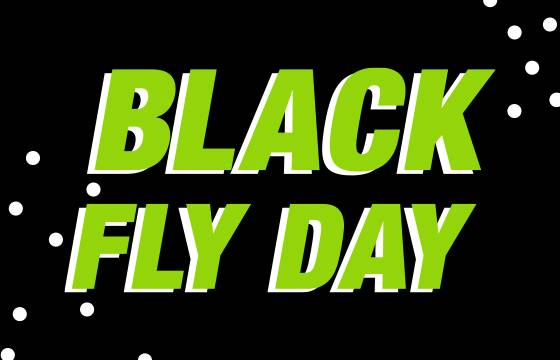 BLACK FLY DAY: 27, 28, 29 November 2020 Buy the flight with OVER 40% DISCOUNT